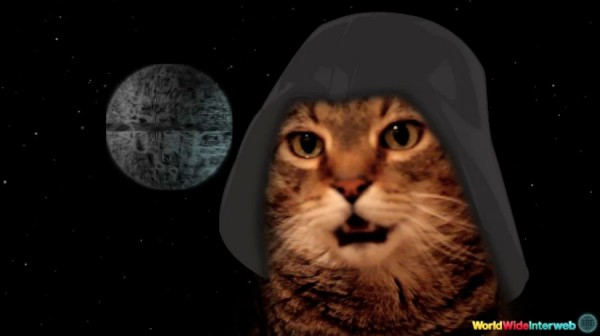 cat-chat-star-wars-theme