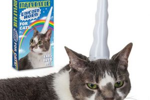inflatable-cat-unicorn-horn