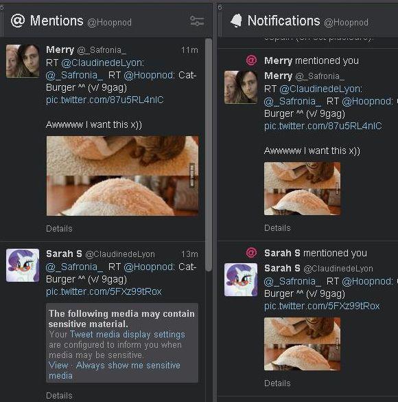 Tweetdeck-bug [580 x 585]