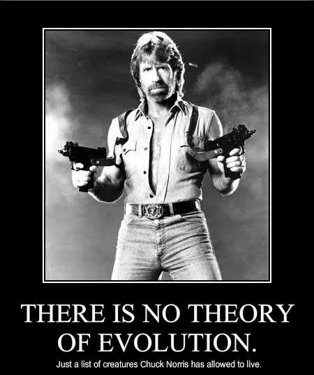 Chuck_norris_facts_meme [450 x 538]