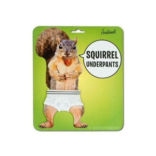 ecureuil-squirrel-slip-underpants [500 x 500]
