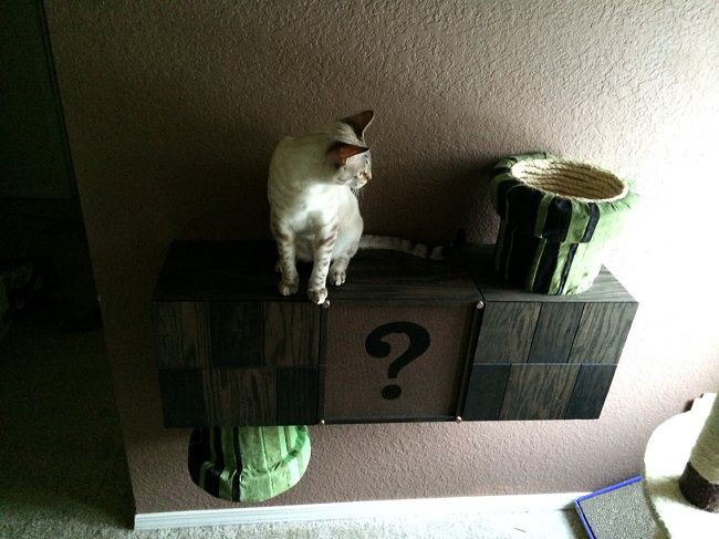 mario-question-box-bloc-cat-chat (2)