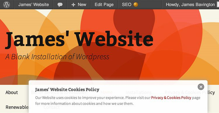 WP-Cookie-Banner-wordpress [750 x 389]