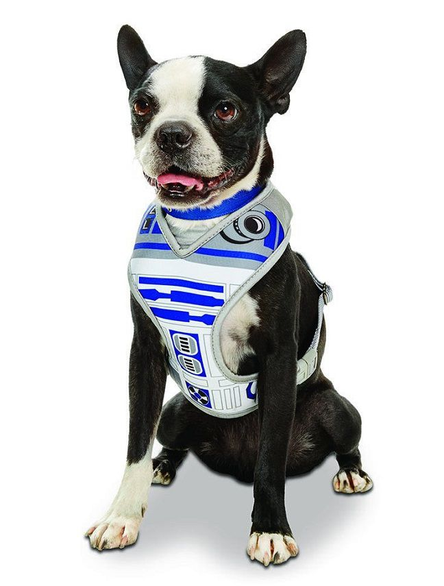star-wars-chien-dog-harnais-harness-R2D2 [648 x 855]