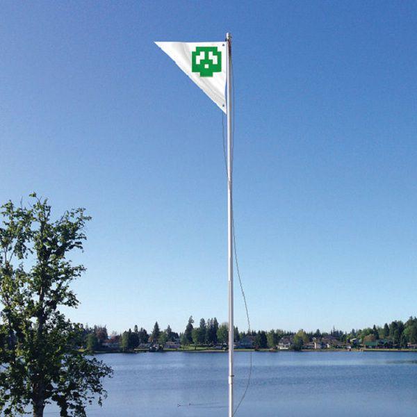 super-mario-bros-flag-drapeau [600 x 600]