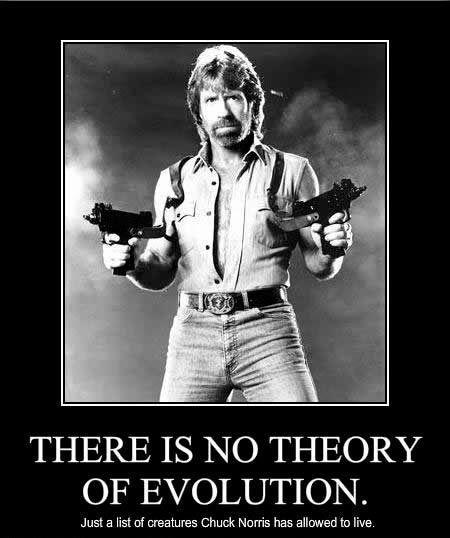 Chuck_norris_facts_meme [450 x 538]