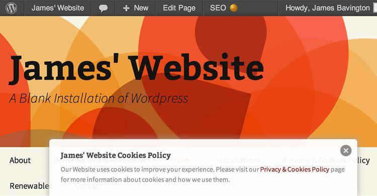 WP-Cookie-Banner-wordpress [750 x 389]