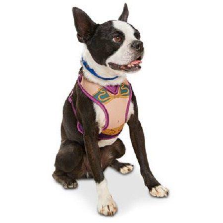 star-wars-chien-dog-harnais-harness-princess-lei-R2D2 [450 x 450]